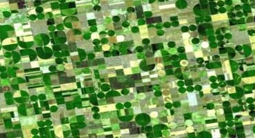Satellite image project