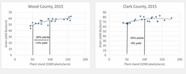 Yield reduction when plant