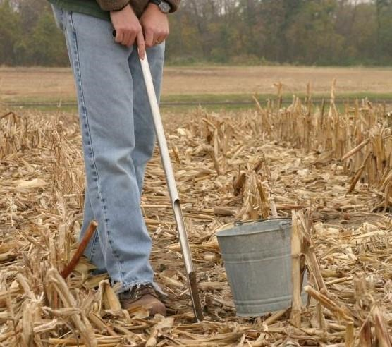 Use a soil probe to collect 15 to 20 soil cores
