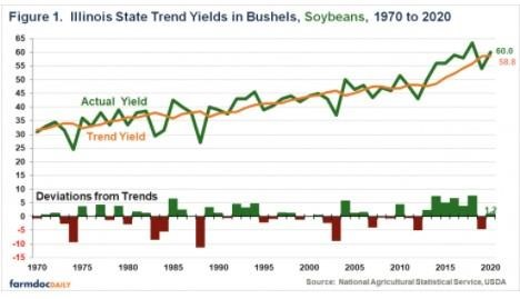 State Soybean Yields in Illinois