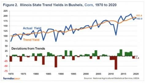 State Corn Yields in Illinois