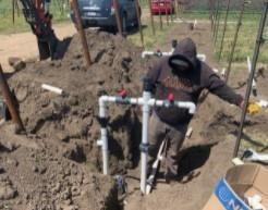 A drip irrigation system is installed at a new vineyard at the UC Davis Oakville Station