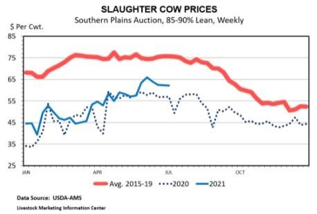 cull cow markets