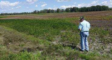 Minister Leal visits Ottawa-area farm to observe weather damage