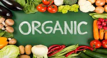 Organic certification process in Ontario needs attention