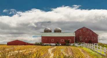 Change of heart(land): Farmers moving toward cash rent