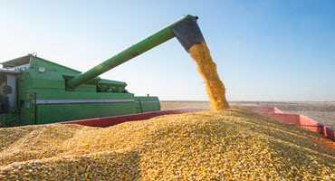 Corn harvest begins in the U.S.