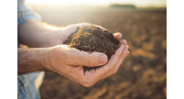 Reaping the benefits of tile drainage: OSCIA developing new tool for farmers