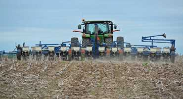 May WASDE bullish for corn and soybeans