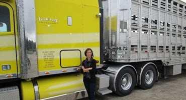 Next steps in animal transport welfare
