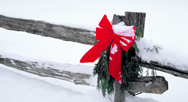 Farmers spread joy this festive season