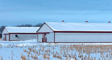 Managing swine barns through winter