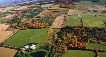 Gov't promises investment in rural Ont.