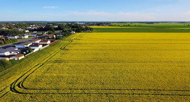 Cutting farmland taxes in Manitoba