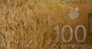 Wheat commissions set record straight