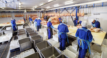 Vaccination plan for U.S. meat plants