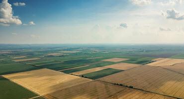 Farmland values increase in 2020