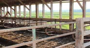 When Building a Barn or Building a Business, Plan for Success!
