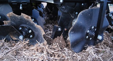 Optimize P and K in strip tilled fields