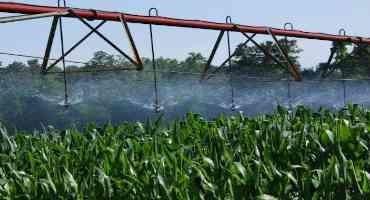 Illinois, Nebraska Scientists Propose Improvements to Precision Crop Irrigation