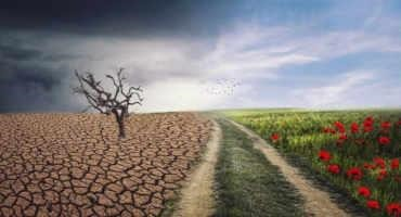 Equipping Crop Plants for Climate Change