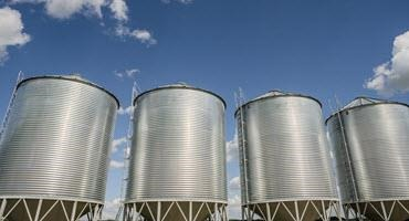 Alta. farmers wanted for grain study