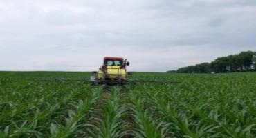 Current In-season Nitrogen Management Considerations for Corn Production
