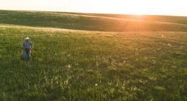 Grassland Fertilization: Terminology and Economics