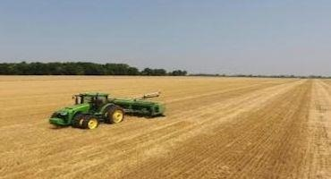 Application of Manure to Double Crop Soybeans to Encourage Emergence