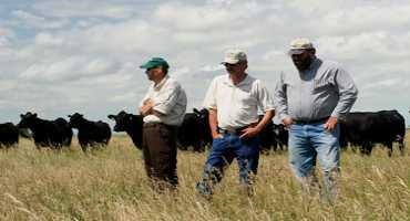 Drought Assistance From USDA: CRP Haying and Grazing