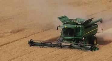 Drought, Heat will Impact Idaho Barley Production