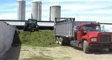 Remember to Think About Silage Leachate