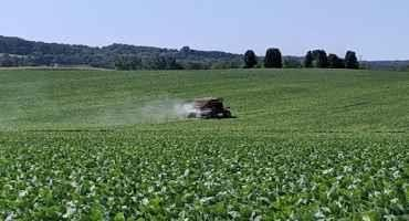 Broadcasting Cover Crops into Soybeans: Encouraging but Elusive