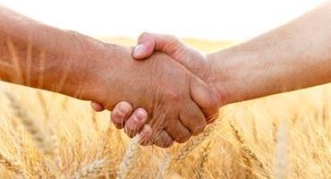U.S. farmers helping Haiti