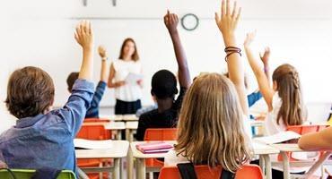 Ontario Pork resource for teachers