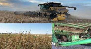 Combine Clean Out Can Help Reduce Weed Spread