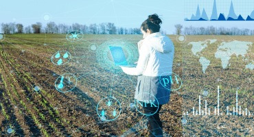 Accelerating A.I. innovation in agriculture