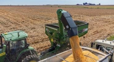 Corn and Soybean Production Could be Close to Record Highs this Year, USDA Predicts