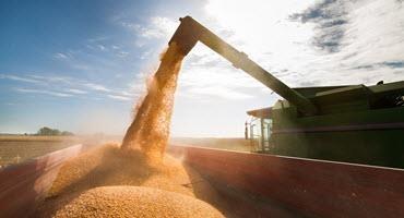 2021 U.S. corn harvest begins