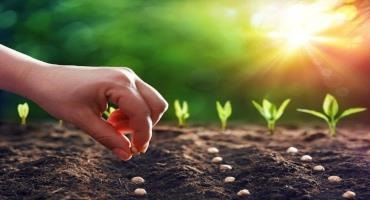 Valent BioSciences and Kansas State University Sign Collaborative Agreement for Soil Health