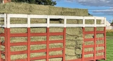 Do You Buy or Produce Horse Hay?