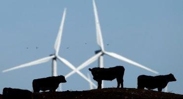 Farmers Offered Climate Credits in Aspiring Carbon Market