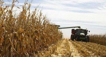 Crop Progress: Nebraska Harvest Continues at Near Average Pace
