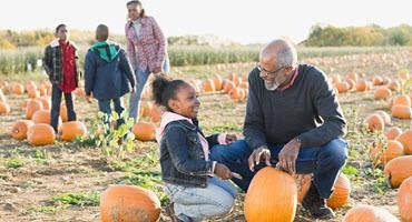 Fall fun on Ont. farms