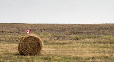 Removing interprovincial trade barriers can benefit ag