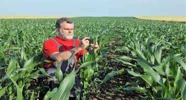 Measuring Soil Health Easily and Reliably
