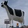 8 Manitoba Roadside Ag Attractions