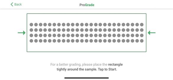 10) Sask. farmers create canola grading app