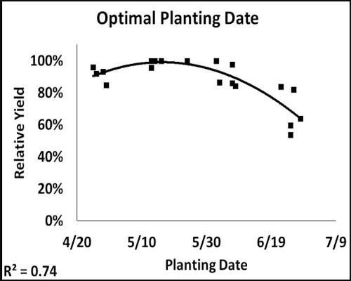 optimal planting date