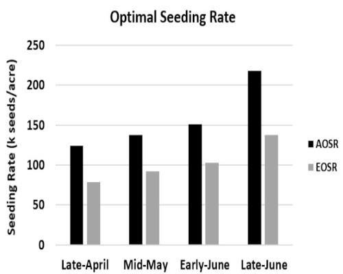 seeding rate
